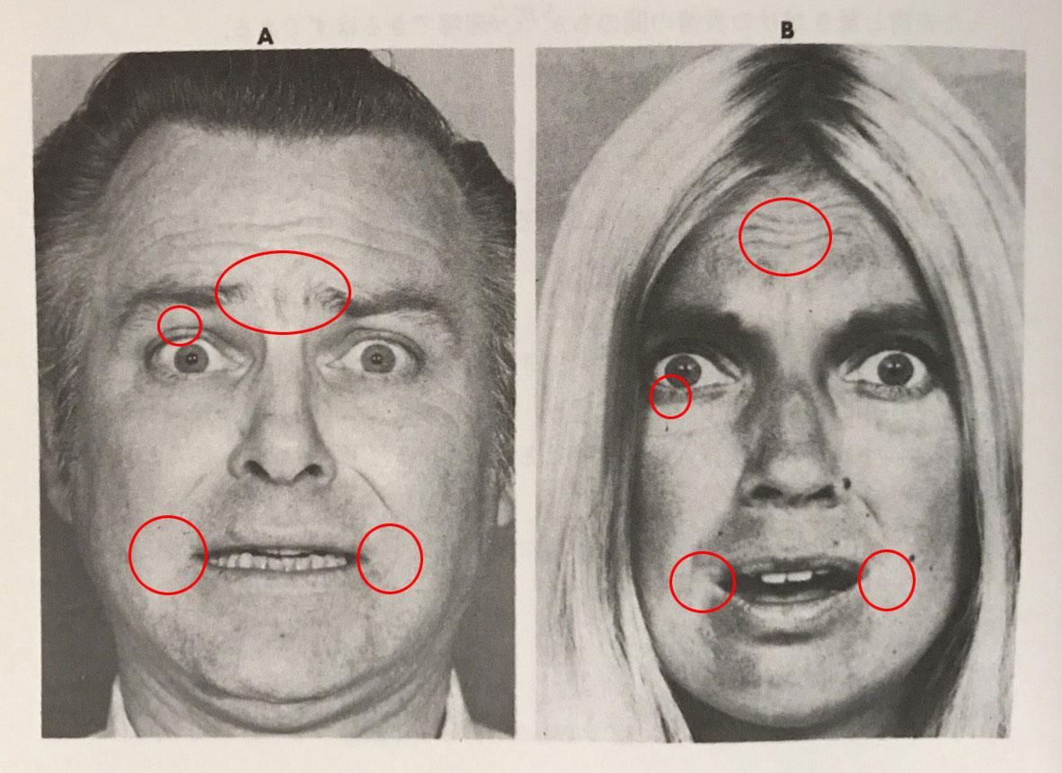 微表情分析_「恐怖」の微表情