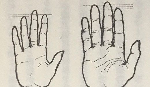 科学が暴いた「指の長さ」に隠れる驚愕の真実